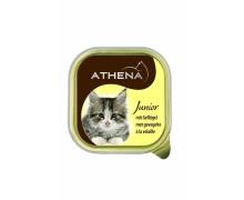 Athena Kitten паштет для котят с домашней птицей